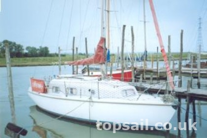 Kingfisher 26
